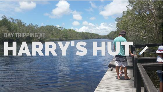 harrys-header